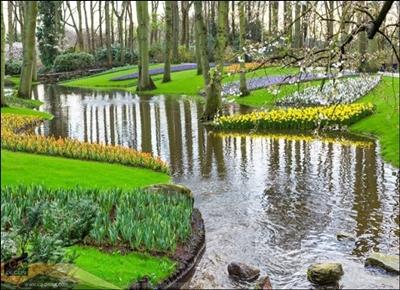 สวนดอกไม้ริมน้ำ