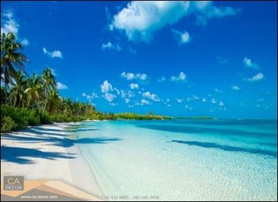 หาดทะเลน้ำใส