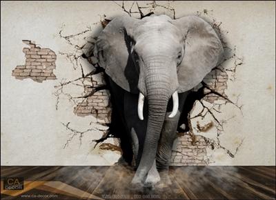 ภาพช้างทะลุกำแพง3มิติ