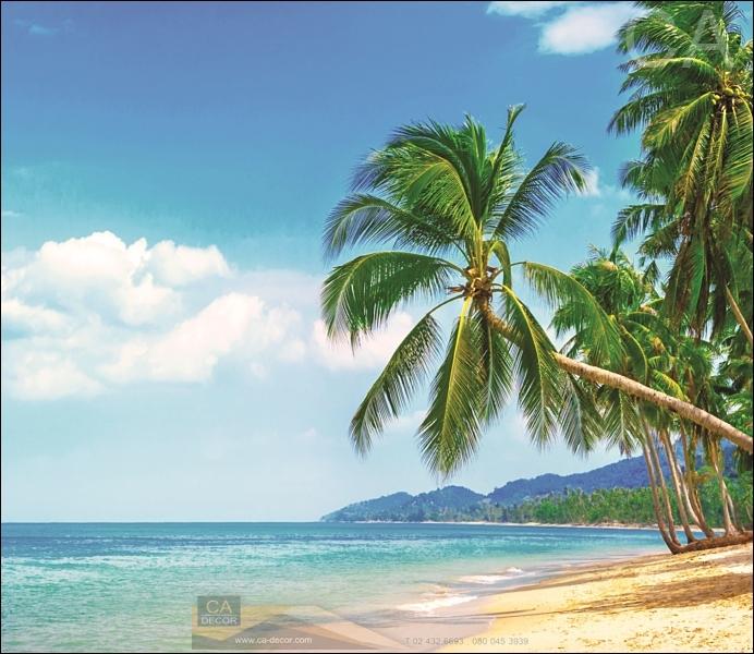ภาพวิวสำเร็จรูป ชายหาดมะพร้าว 300B001