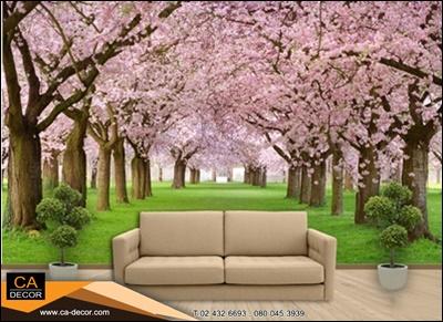 อุโมงค์ต้นไม้สีชมพู01